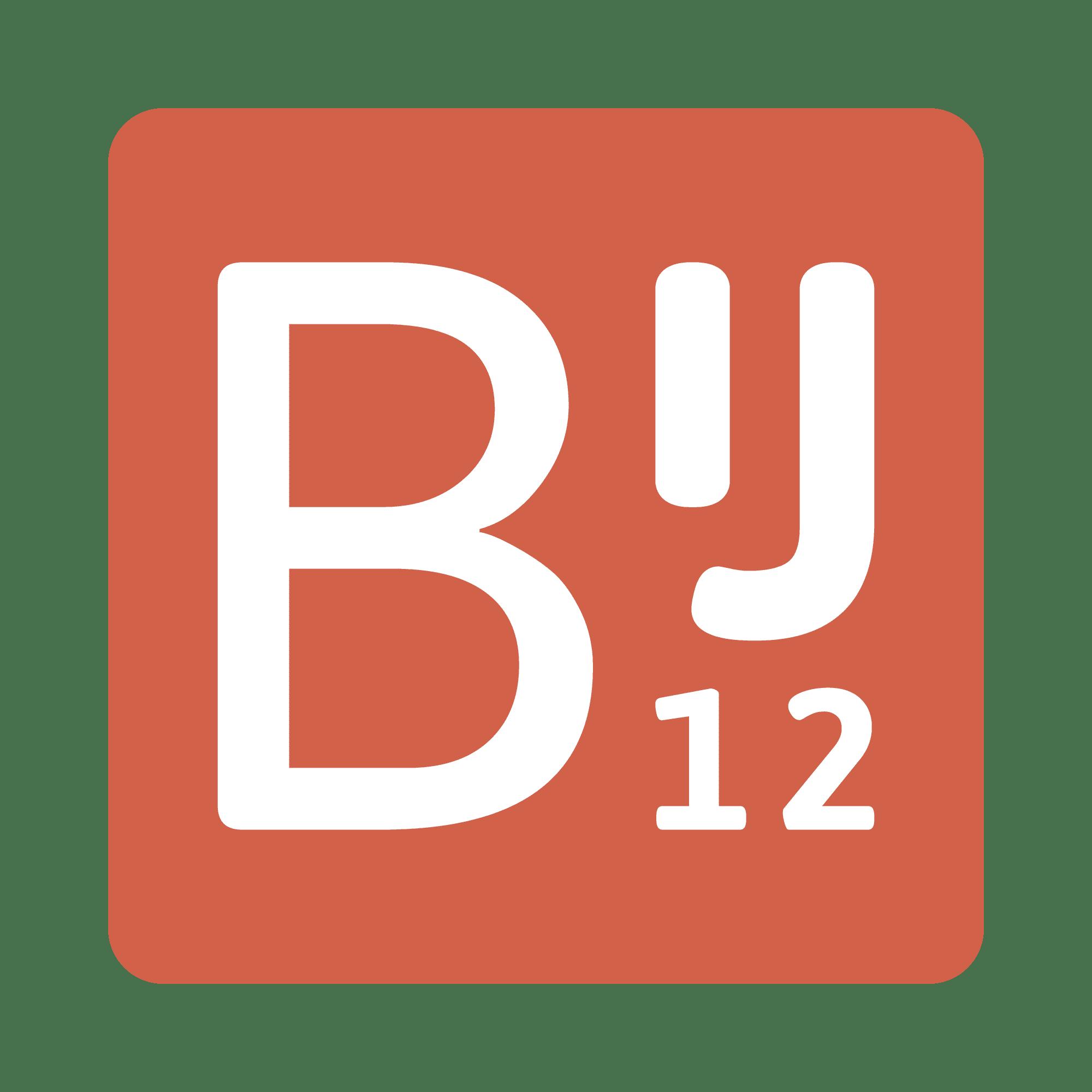 BIJ12 - LOGO - ZoomWorks - PNG